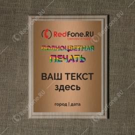 Плакетка наградная деревянная, Беленый дуб, 230x300 мм